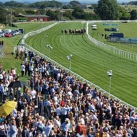 Racecourse in action